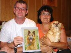 Schwer vermittelbare Hunde Tierheim Beuern bittet um Hilfe