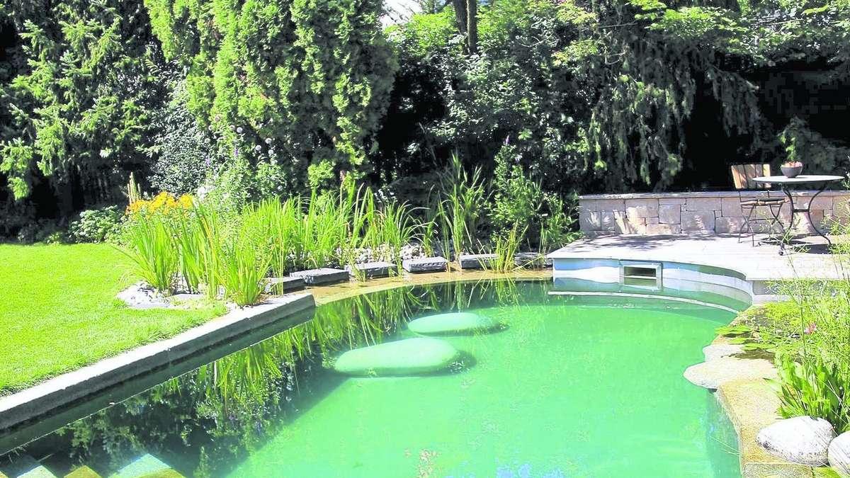Ein badetraum im garten schwimmteiche sind ideal zur for Garten pool chlor