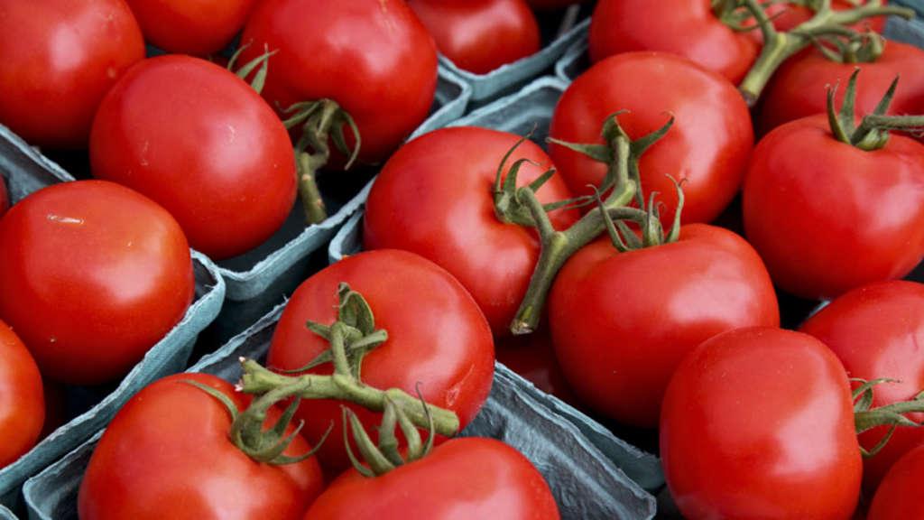 tomaten sind lieblingsgem se der deutschen wirtschaft. Black Bedroom Furniture Sets. Home Design Ideas