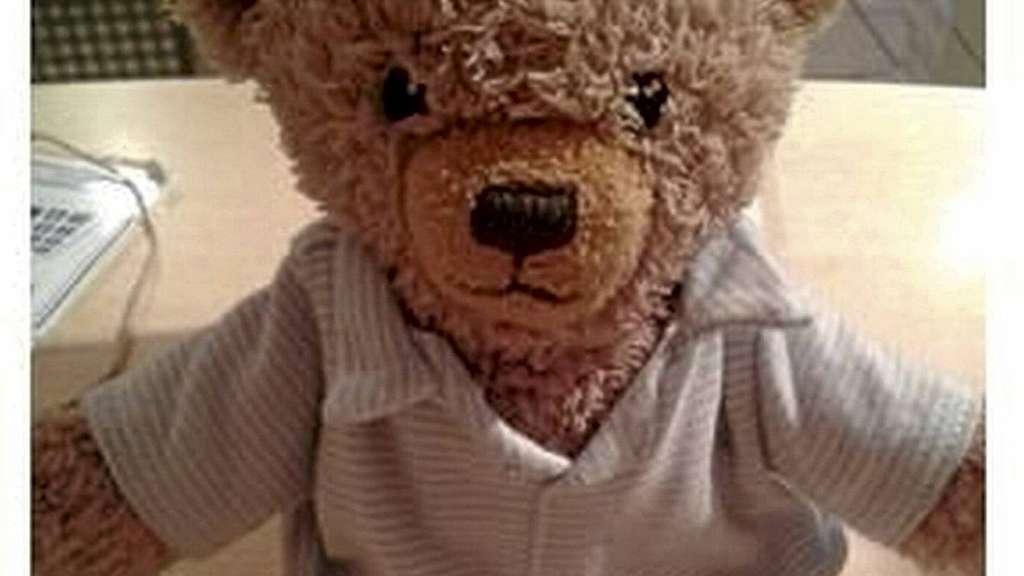 erfolgreiche fahndung teddyb r pauli ist wieder bei seiner familie g ttingen. Black Bedroom Furniture Sets. Home Design Ideas