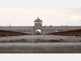 Hann. Münden gedenkt der Opfer des Holocaust - HNA.de
