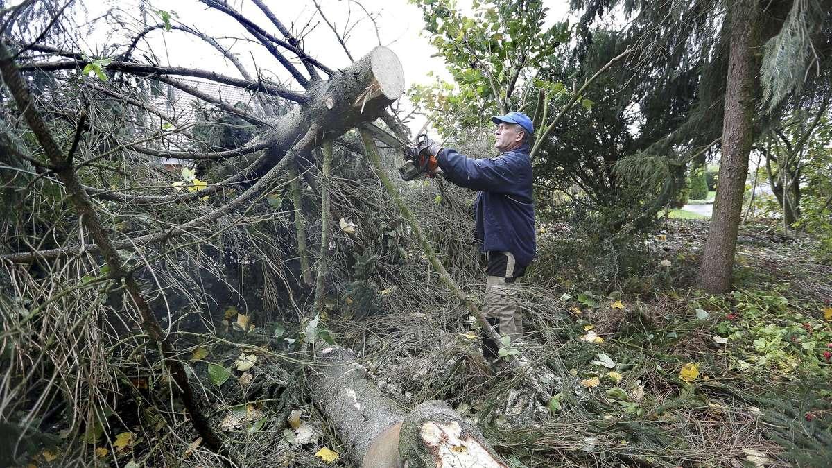 Bäume auf der straße ein auto wird beschädigt witzenhausen
