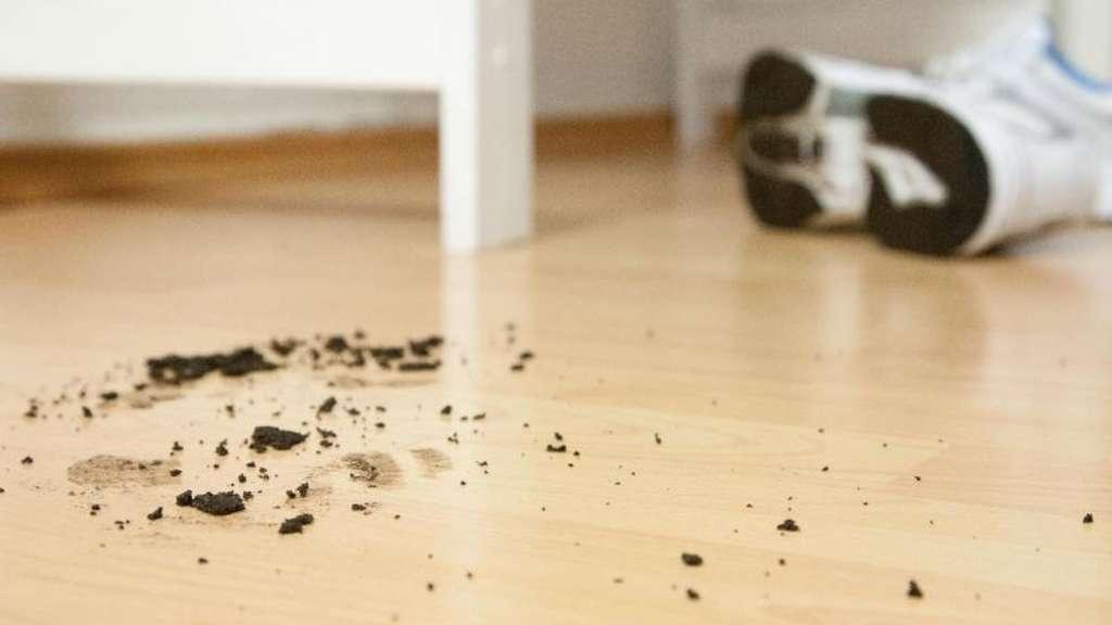 mieter muss laminat als teppichersatz nicht hinnehmen wohnen. Black Bedroom Furniture Sets. Home Design Ideas