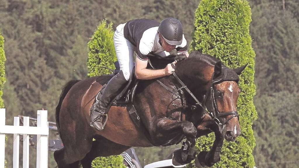 Toller Reitsport in Holtensen
