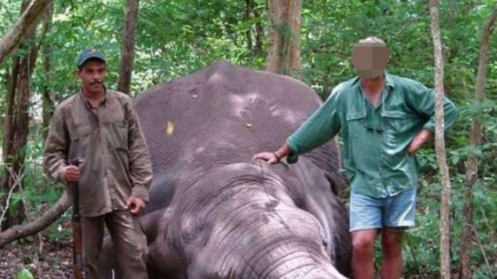 Herde gestört - Großwildjäger bei Safari von Elefantenkuh erdrückt