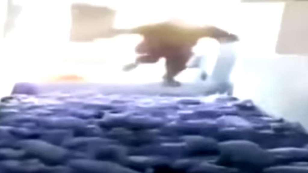 Mann springt auf Ferkel und tötet sie