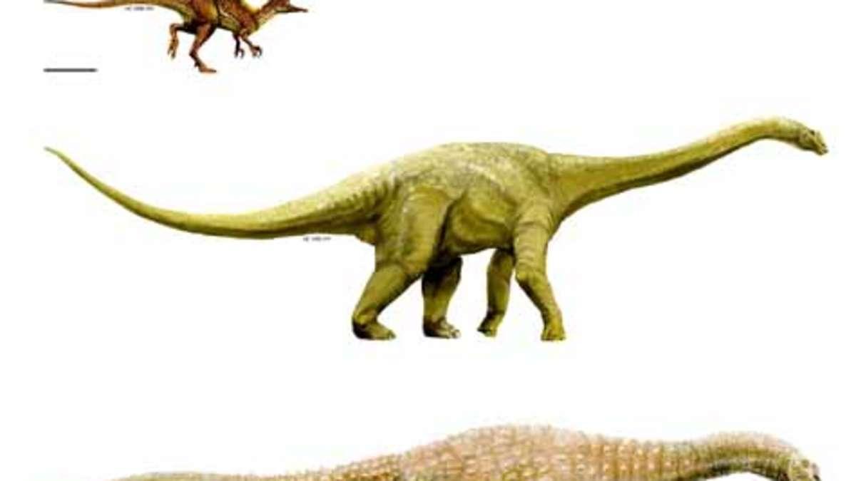 drei neue dinosaurier arten in australien entdeckt welt. Black Bedroom Furniture Sets. Home Design Ideas