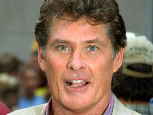 David Hasselhoff bekommt Reality-Show