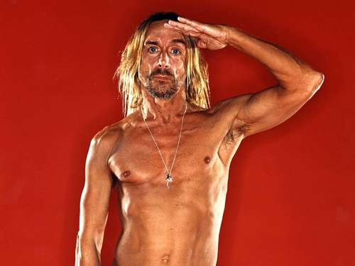 Star beim Open Flair: Punk-Legende Iggy Pop (64) im Interview