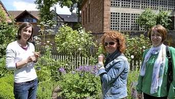 Tag Der Offenen Garten Tausende Besucher Staunten Und Holten Sich Tipps Frankenberg Waldeck