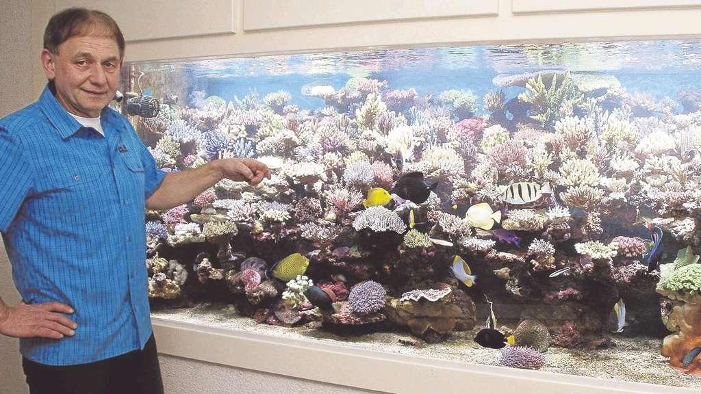 Manfred trusheim betreut ein 3000 liter meerwasser for Salzwasser aquarium fische