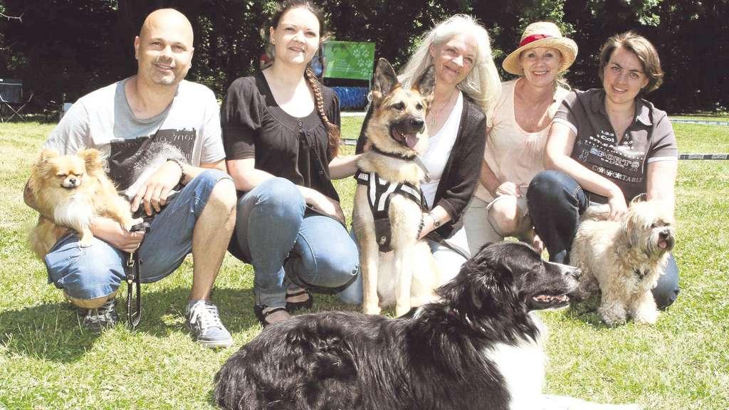 Ein Herz für kranke Hunde: Schäferhundhilfe pflegt heimatlose ...