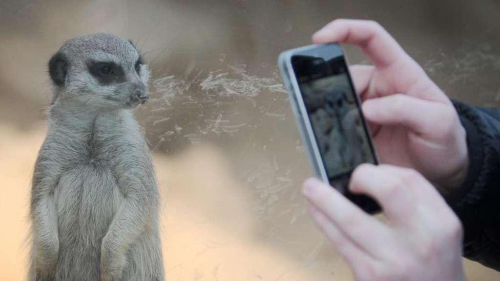 Zum Mailen Anpassen Smartphone Fotos Verkleinern Netzwelt