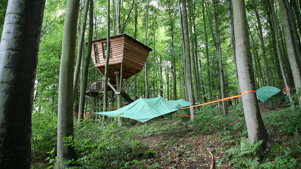 Robins Nest Bei Schloss Berlepsch Ist Nordhessens Einziges Baumhotel