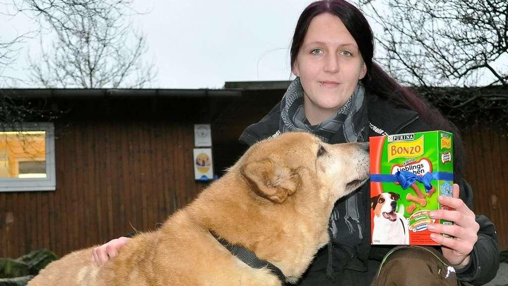 Weihnachten im Tierheim - auch Hunde mögen Geschenke | Bad Karlshafen