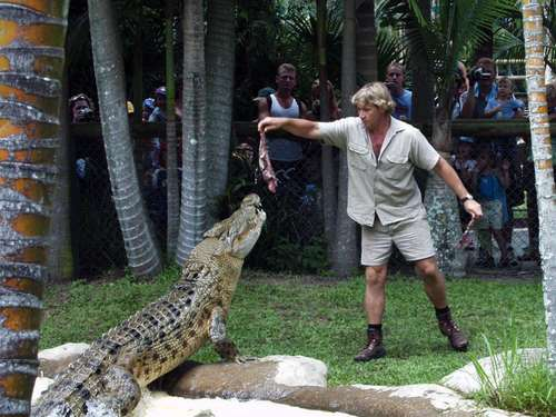 """Crocodile Hunter"" Steve Irwin bekommt posthum Hollywood-Stern"