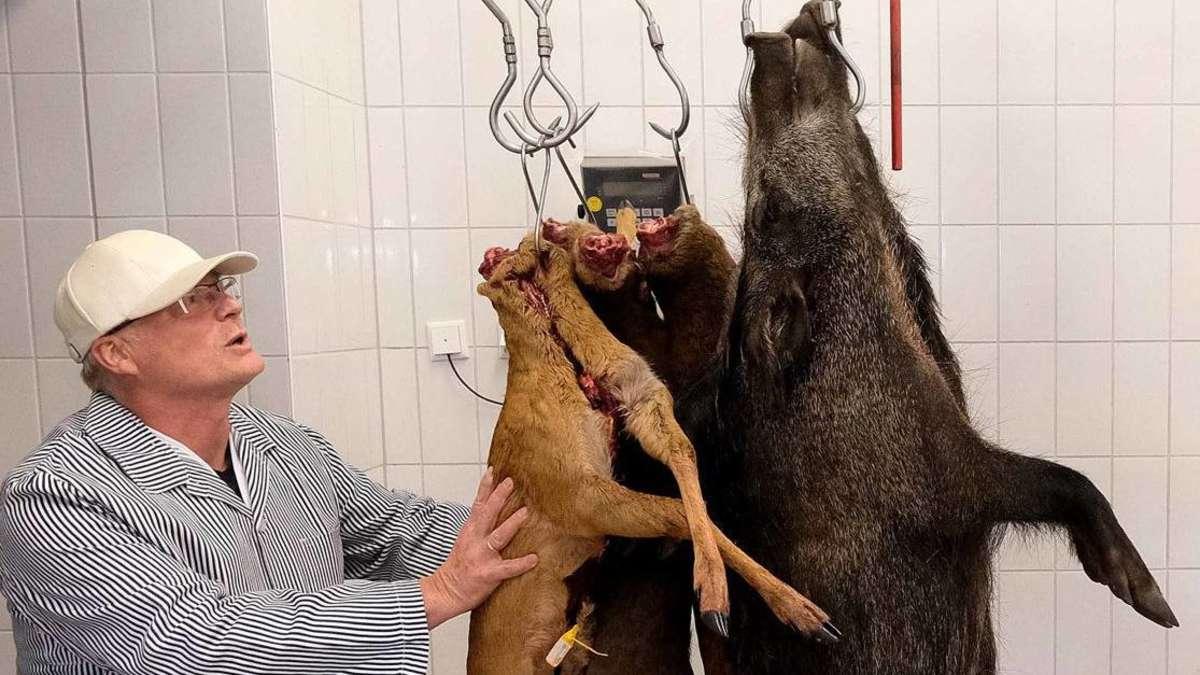 Wildfleisch vom Fachmann: Bio-Spezialitäten für Mensch & Tier   Northeim