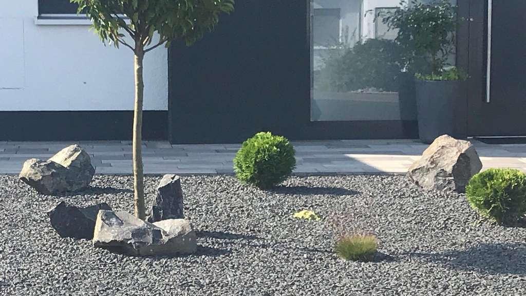 kleine steine fur vorgarten, steingärten im kreis kassel: lebensraum für insekten wird immer, Design ideen