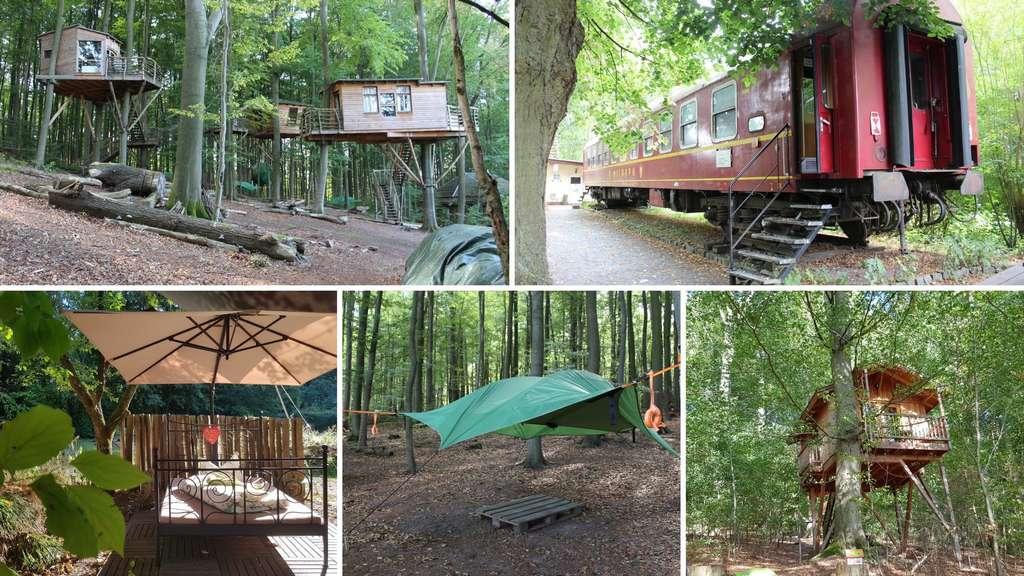 Baumhaus Eisenbahn Waggon Schwebendes Zelt Hotels Der Region
