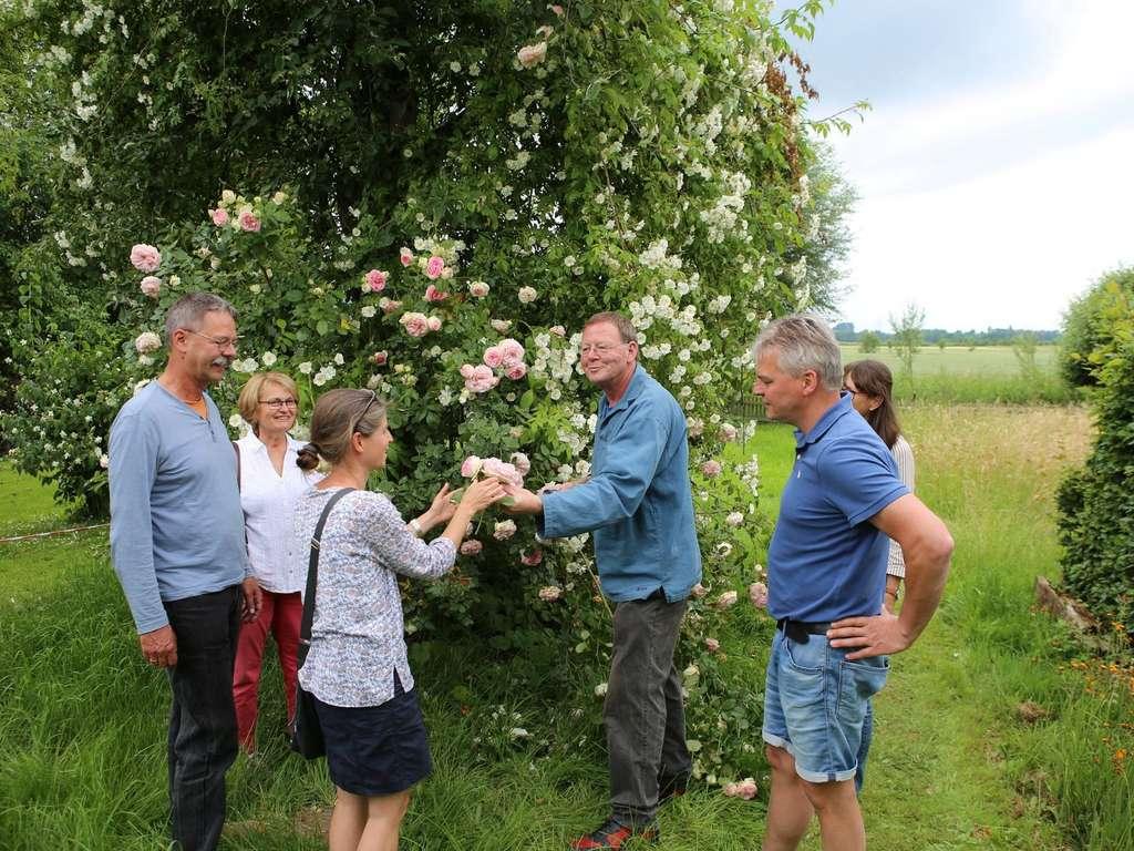 Tag Des Offenen Gartens 2019 Im Landkreis Gottingen Gottingen