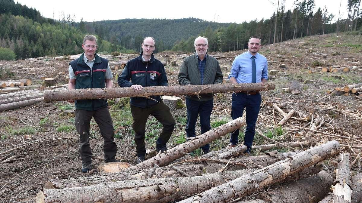 Forstbetriebe in Waldeck-Frankenberg: Fichte statt Buche als Brennholz kaufen