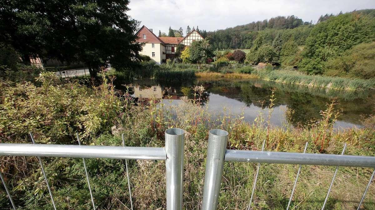 Zaunfreie Zukunft für Rieder Teich in Sicht