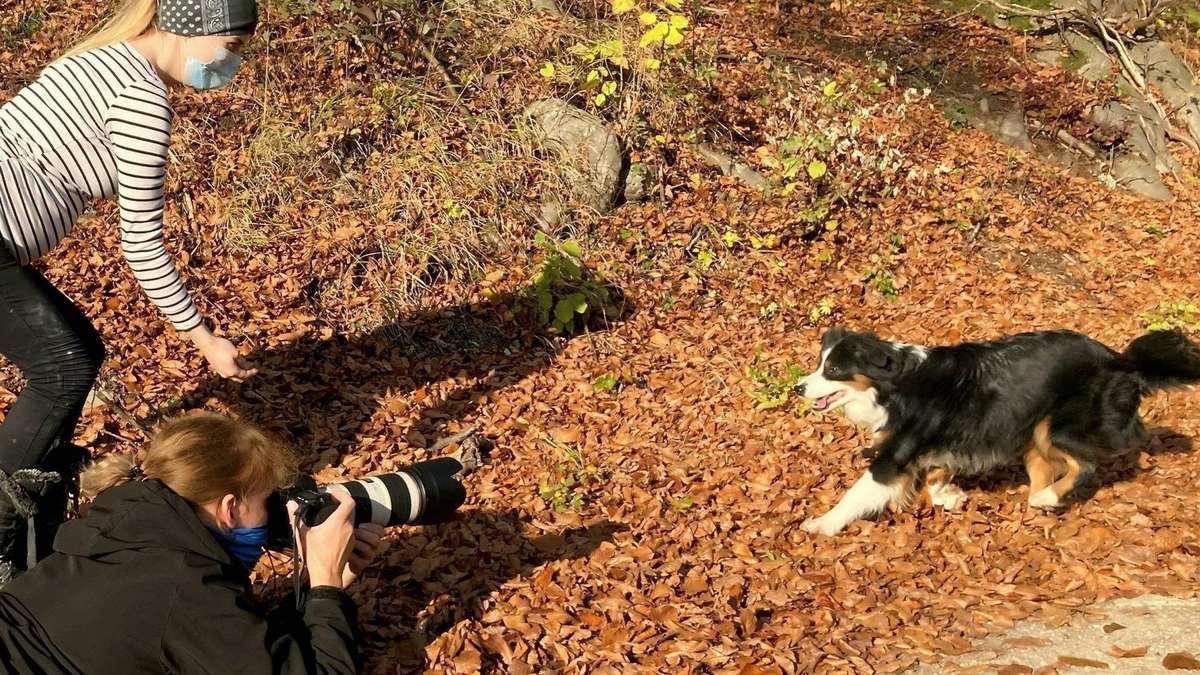 Fotografin Margitta Hild kennt Tricks für gute Tieraufnahmen